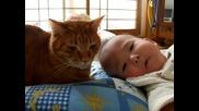 Коте и бебе 5