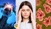 Потресаващо: във Флорида се появи ядяща мозъци амеба