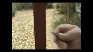 Изумително Най - Малкия Пистолет В Света