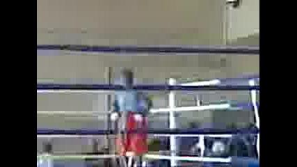 Senay boxiora