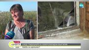Какви са щетите след градушките в Северозападна България