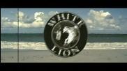 Voltio - Chulin Culin Chunfly