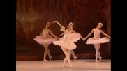 The Sleeping Beauty Kirov/marinsky Ballet 20