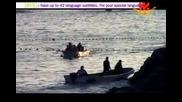 Затворени доживотно: Морски бозайници в плен