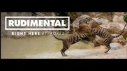 Rudimental ft. Foxes - Right here ( Lyrics)