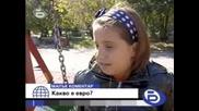 Малък Коментар - Какво Е Евро?