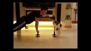 Вижте как тренира едно малко сладурче