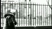 Blackstar ft. Common - Respiration