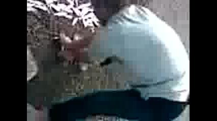 Ibram Ribaria Lovi Okley na dunava