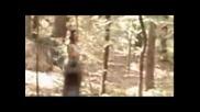 Pastor Troy - Saddam [video] Hardcore Rap