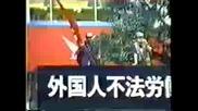 Nsjap - Японската нацистка партия