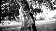 Танцът на Ариел