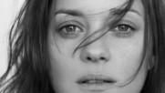 Luce Dufault ☀️ Damn Your Eyes