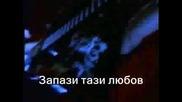 Pantera - This Love Превод