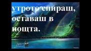 Пурпурен Залез автор Анелия Дойчева