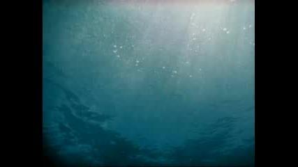 Ето Нещо С Което Да Се Гордеем Един От Най Добрите Парфюми В Света =bvlgari Aqua Marine= bluff