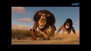 Мадагаскар 2 Бягство към Африка (2008)