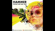 Hammer - Promo Mix May 2014