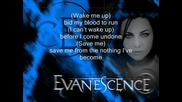 Evanescence - Bring me to life +subs