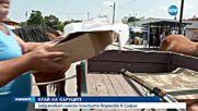 Забраняват наесен конските впрягове в София