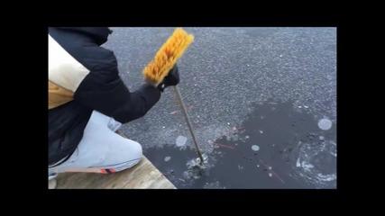 Фойерверки във вода