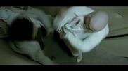 Дани кучето - Бг Аудио ( Високо Качество ) Част 3 (2005)
