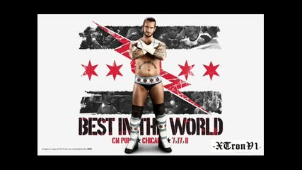 Cm punk - Cult of Personality !!