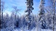 Prihod zimы tak skor i neizbejen... Raimond Pauls.