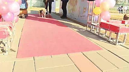 Let the cuteness begin! Four-legged athletes 'em-bark' on Beijing's Dog Olympics