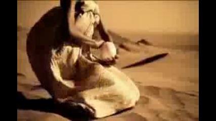 Аквариум - Девойките танцуват сами
