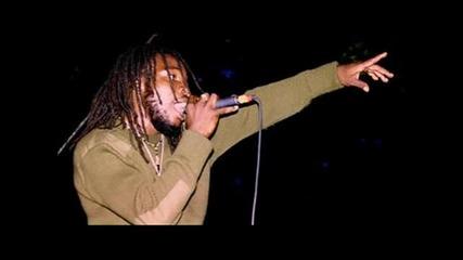 Bushman - Cannabis