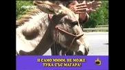 Господари на ефира 22/06/2009 [смях] Паяк дига каруцата на циганин...