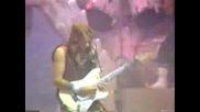 Iron Maiden Still Life