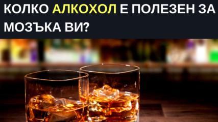 Колко алкохол е полезен за мозъка ви?