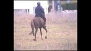 Езда на Румбата с Гигант.