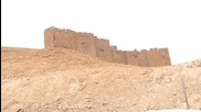 Syria: Govt. forces recapture Palmyra as IS flee historic site