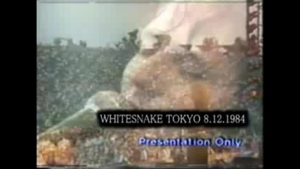 Whitesnake - Soldier of the fortune