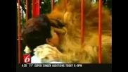 Влюбен Лъв Раздава Целувки (Лъвски Целувки)