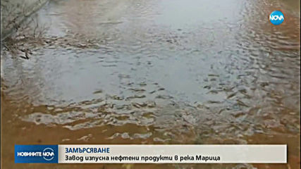 Новото замърсяване на река Марица не е опасно за водата