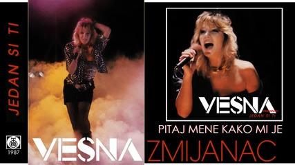 Vesna Zmijanac - Pitaj mene kako mi je - (Audio 1987)