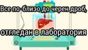 Все по-близо до черен дроб отгледан в лаборатория