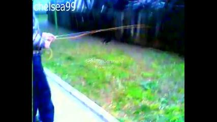 na lov za kotki :d
