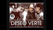 Baby Rasta y Various Artists - Deseo Verte *2010*
