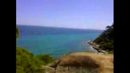 Клипче От Брега На Морето
