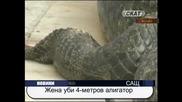 Жена уби 4–метров алигатор