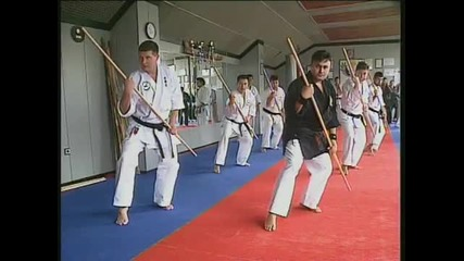 hanshi Tadashi Yamashita(part 2 of 4)-seminar2005 Suibukan Bulgaria