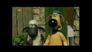 Shaun The Sheep - Washing Day