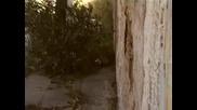 Pasxalis Terzis - Mesa Sto Parapono Mou