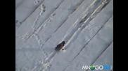 Врана сноубордистка