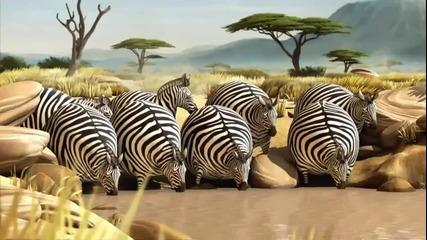 Как щяха да изглеждат животните яко ядяха Kfc :d